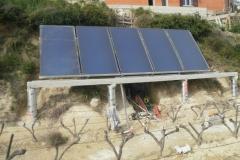 Capteurs solaires au sol